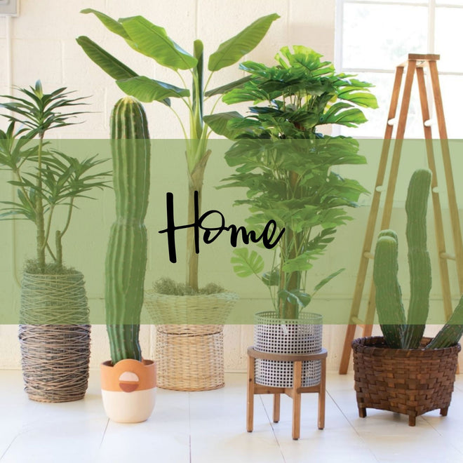 New Arrivals: Home