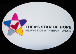 TSOH Car Magnet