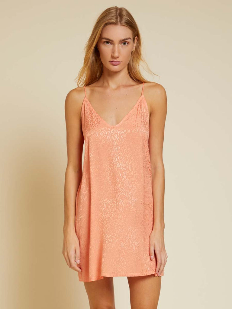 Nation LTD Penelope Dress in Sherbet