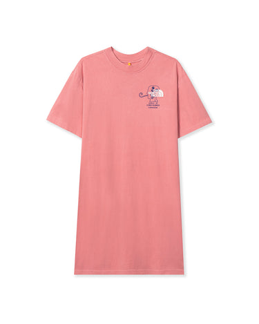 The North Face T-Shirt Dress Mesa Rose 1