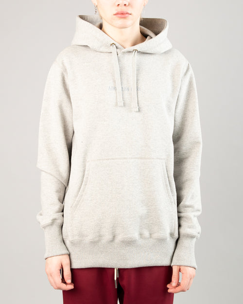 Logo Hoodie Heather Grey 1