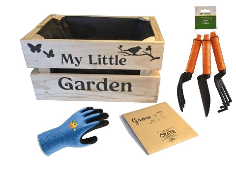 Little Garden planting kit