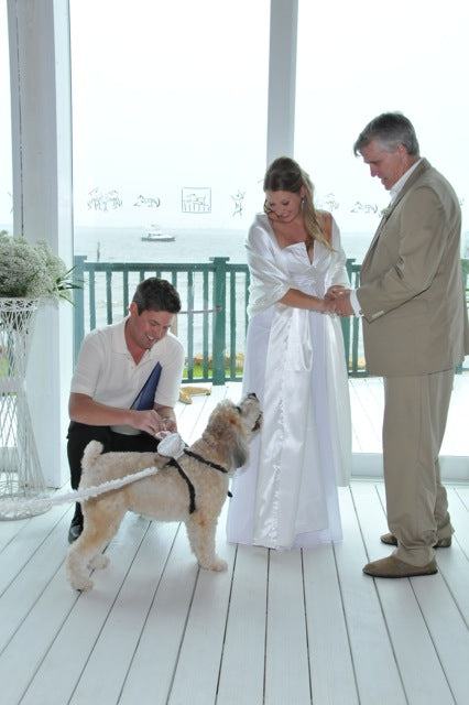 Brianne's special ring-bearer, her dog
