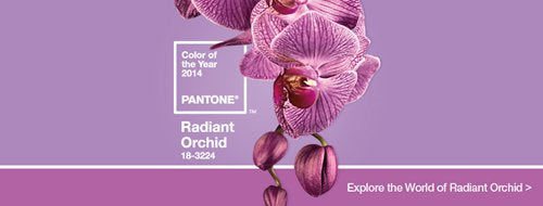 outerinner.com introduces orchid color of 2014