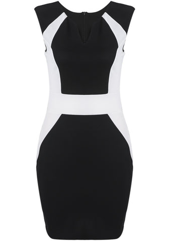 Black V Neck Sleeveless Slim Bodycon Dress