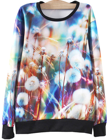 Multicolor Long Sleeve Dandelion Print Sweatshirt