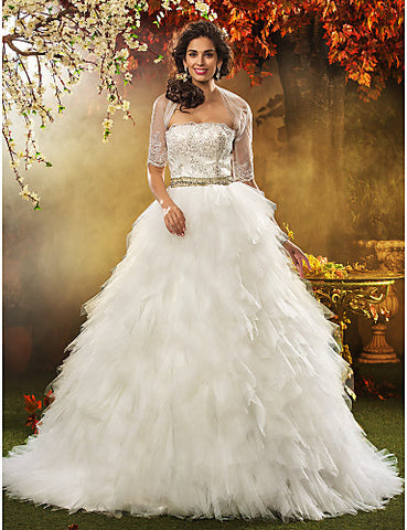 Ball Gown Strapless Sweep/Brush Train Appliques Tulle Wedding Dress With A Wrap