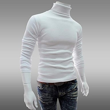 Men's Hedging Turtleneck Sweater