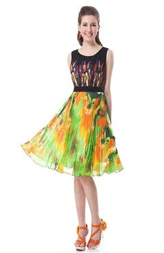 Printed Round Neck Pleated Homecoming Dress