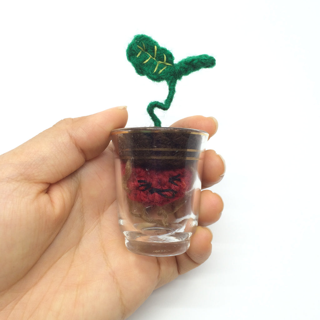 Bean Sprout in Shot Glass
