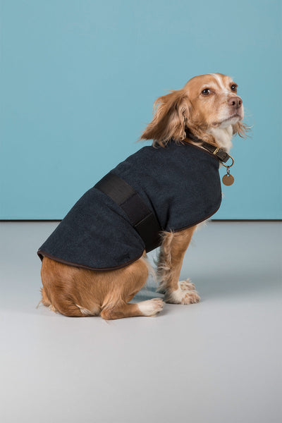 Iron - Rydale Fleece Dog Coat