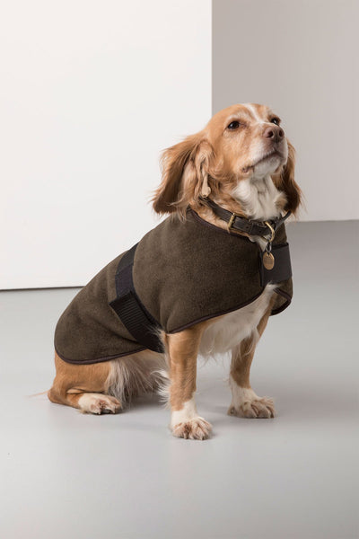Olive - Rydale Fleece Dog Coat