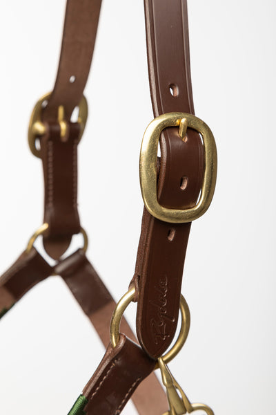 Khaki/Vanilla/Navy - Polo Head Collar