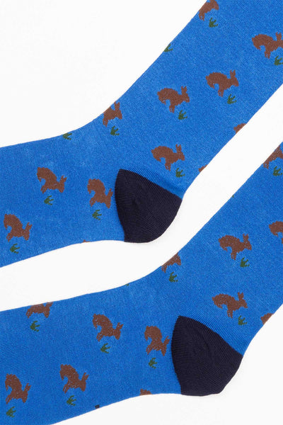 Royal Blue - Men's Hare Socks