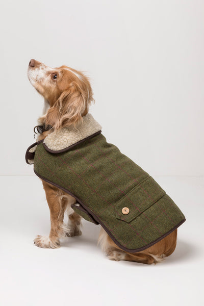 Plum - Rydale Tweed Dog Coat