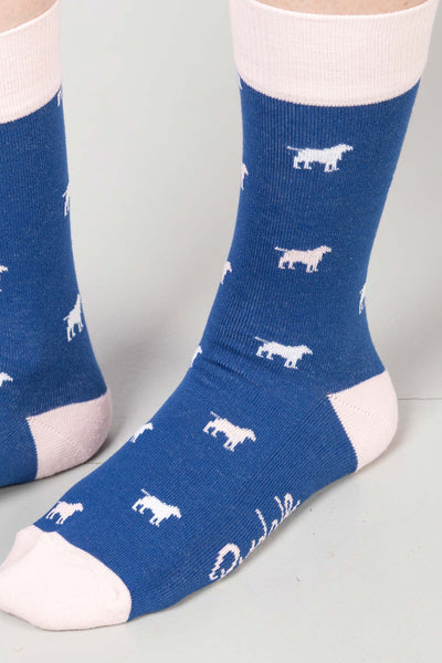 Blue - Ladies Wagging Dog II Ankle Socks