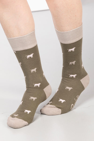 Khaki - Ladies Wagging Dog II Ankle Socks