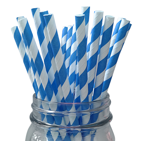 BLUE & White Stripe Paper Straws