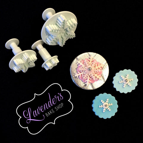 Snowflake Design 1 Plungers