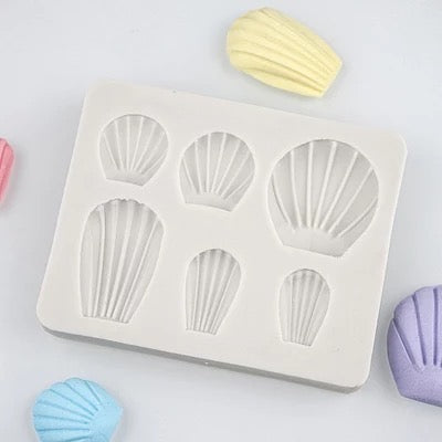 6pc Shell Variety