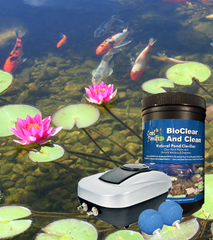 Keep Your Pond Water Clear