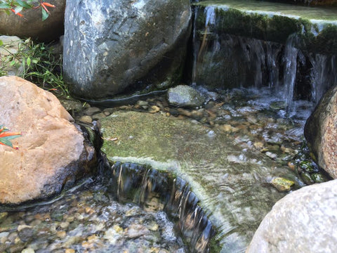 waterfall cleaned with algaeoff