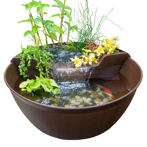 cool ponds container pond kit