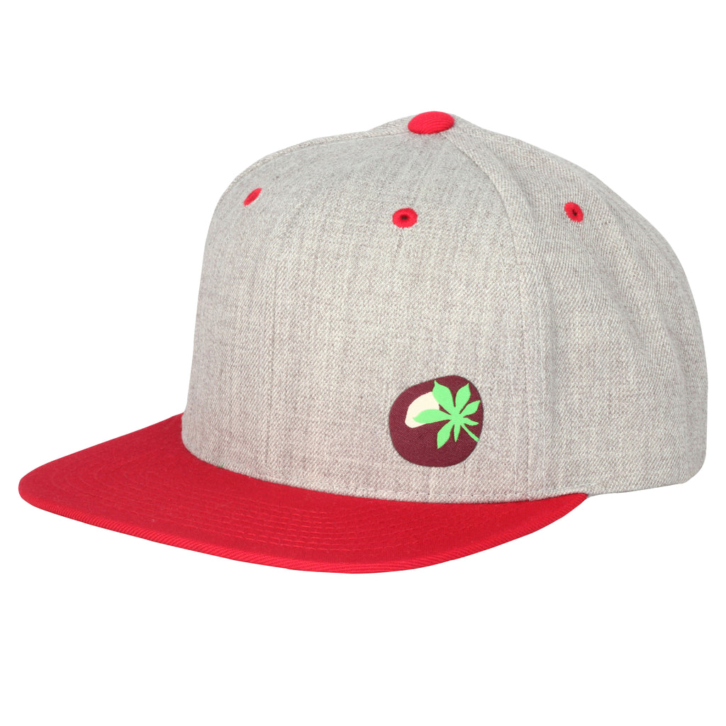 Mini Buckeye Ohio Snap Back Hat - Clothe Ohio - Soft Ohio Shirts