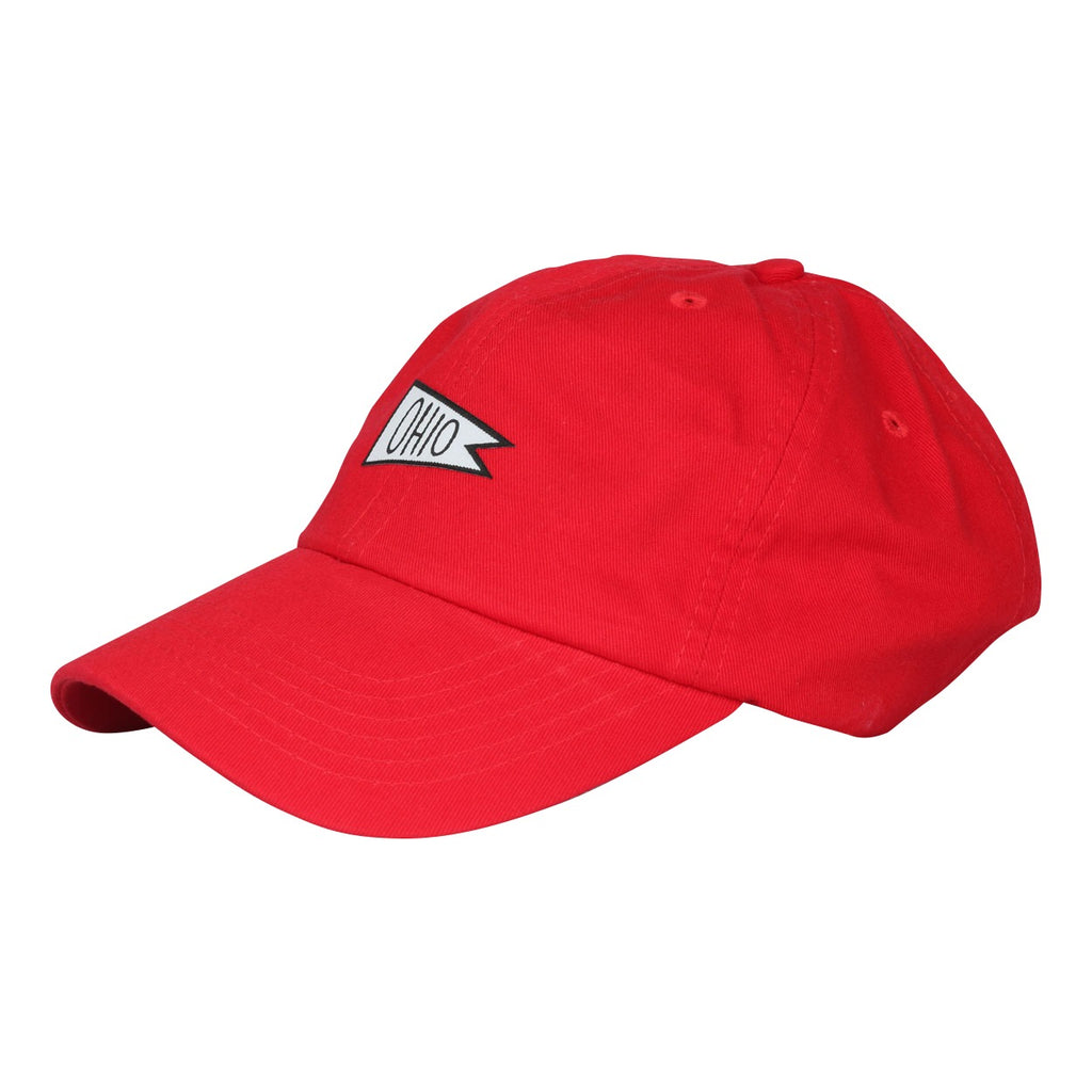 Ohio Sports Flag Dad Hat