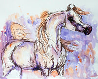 Arabian Horse Pen and Ink Water Color Painting