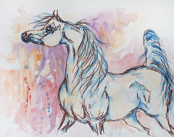 Arabian Horse Painting Ink and Watercolor