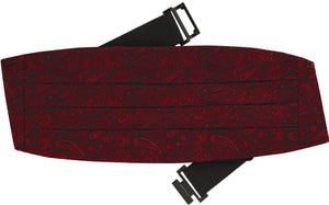 Boy's Fancy Print Cummerbund