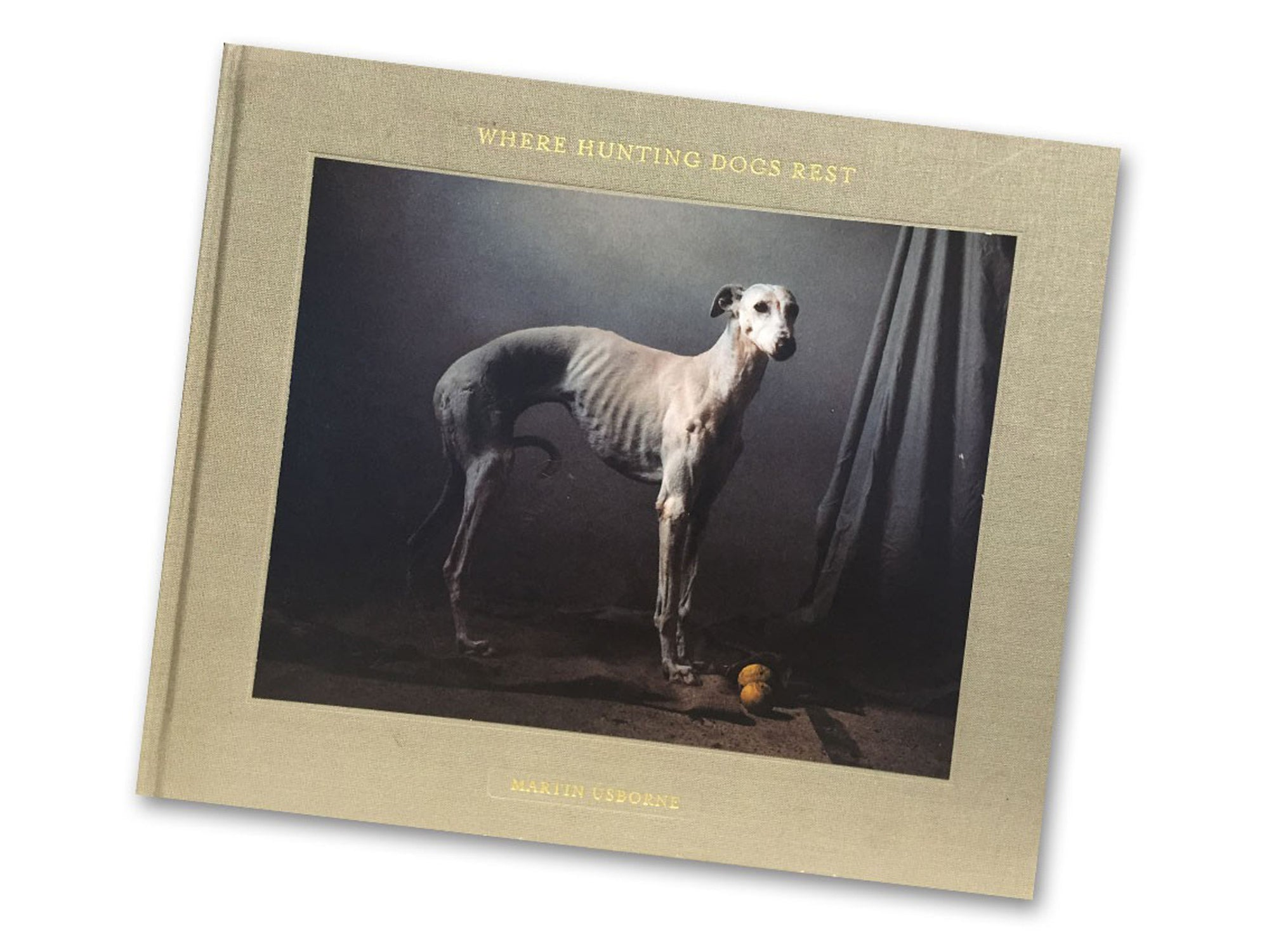 Buch | »The story of the Spanish Hunting Dogs« von Fotograf Martin Usborne