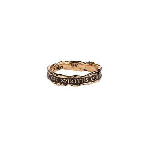 Amor Est Spiritus Qui Nos Alet Narrow 14K Gold Textured Band Ring