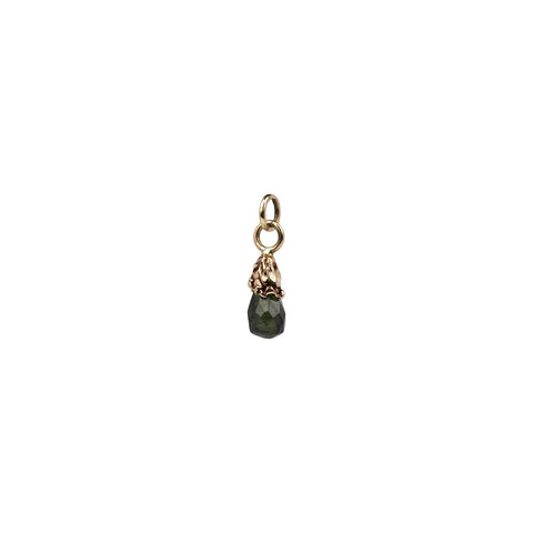 Transformation 14K Gold Capped Attraction Charm
