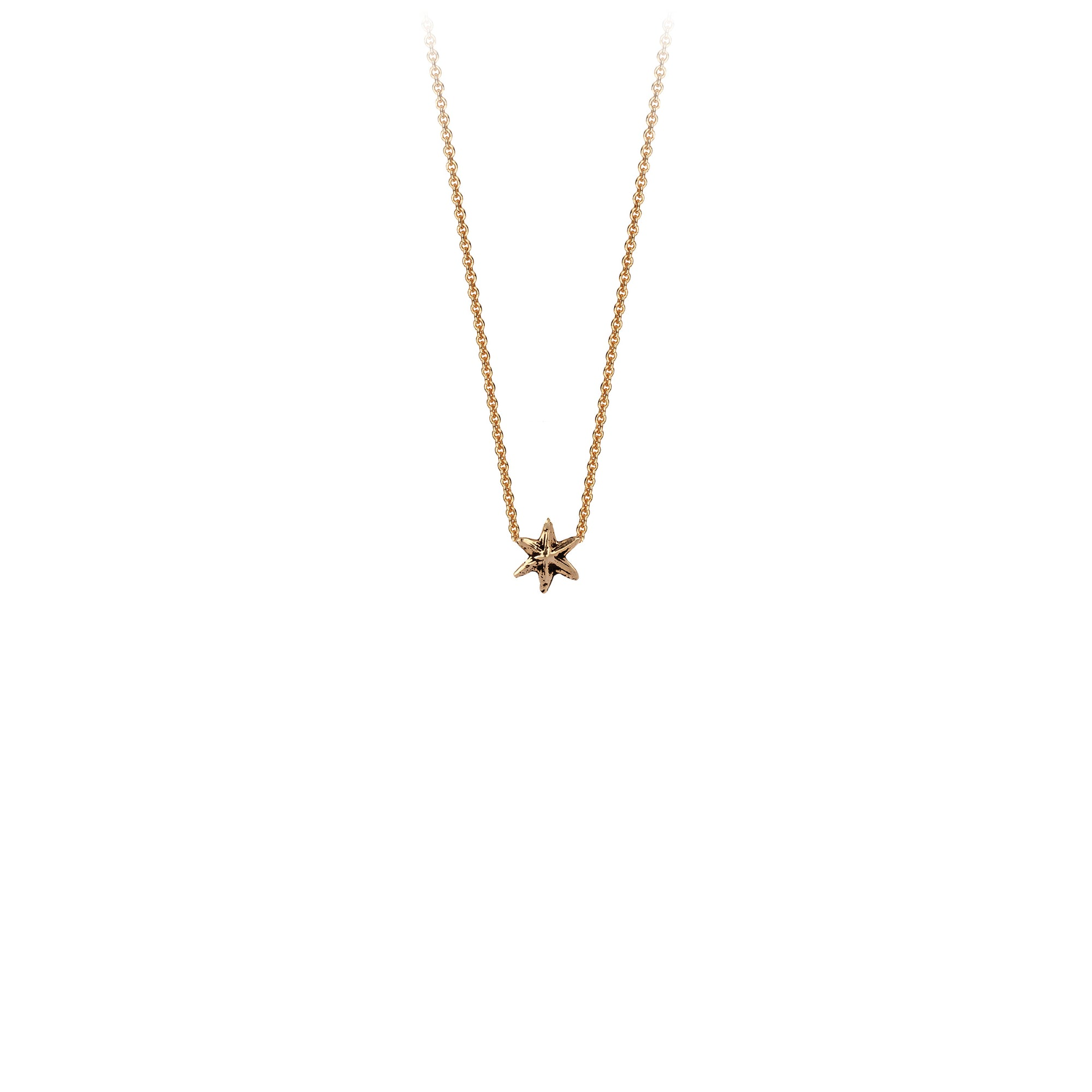 Pyrrha Star 14K Gold Symbol Charm Necklace