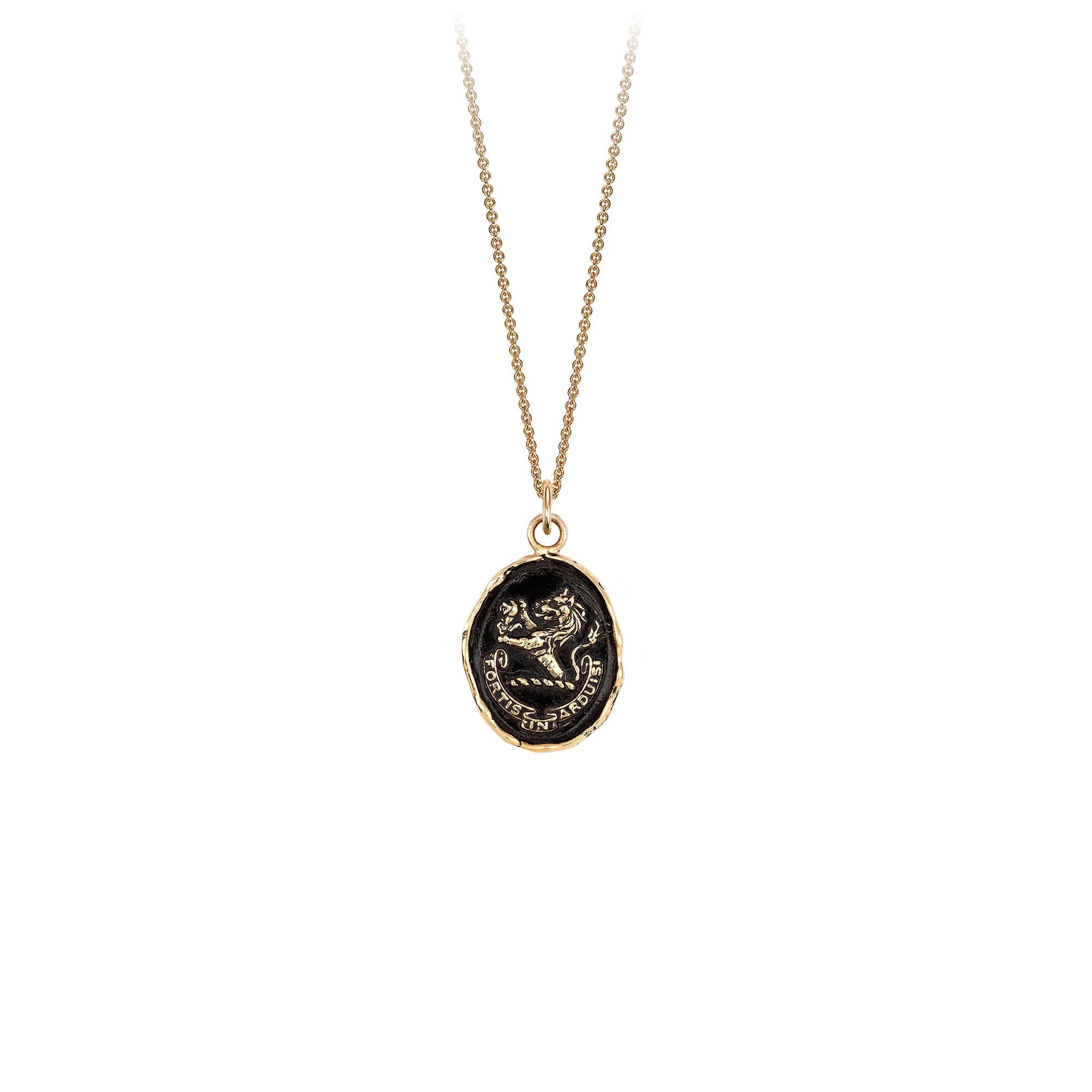 Pyrrha Brave in Difficulties 14K Gold Talisman Necklace