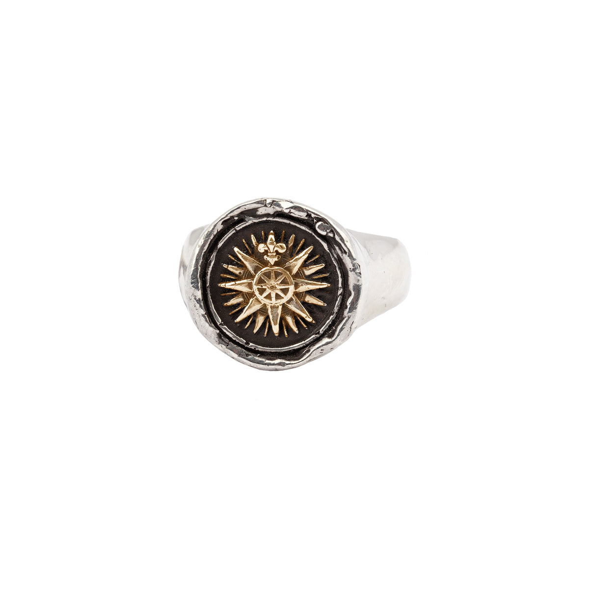 Direction 14k gold on silver signet ring - Pyrrha - 1
