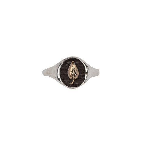 Leaf 14k Gold on Silver Symbol Signet Ring - Pyrrha  - 1