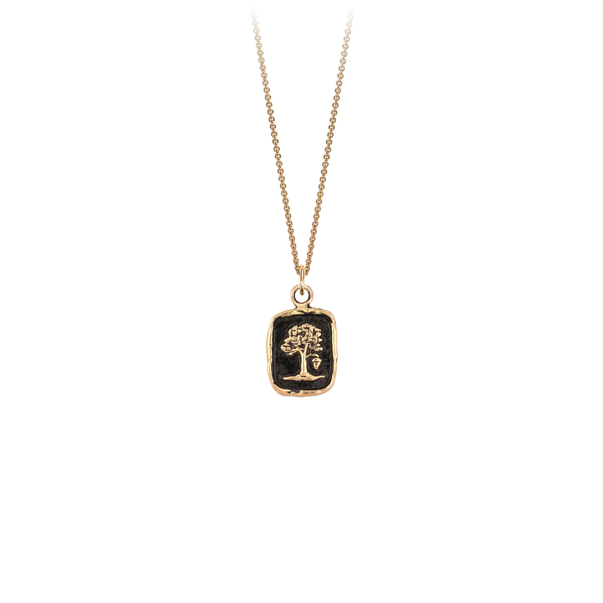 Pyrrha 14K Gold Potential for Greatness Talisman Necklace