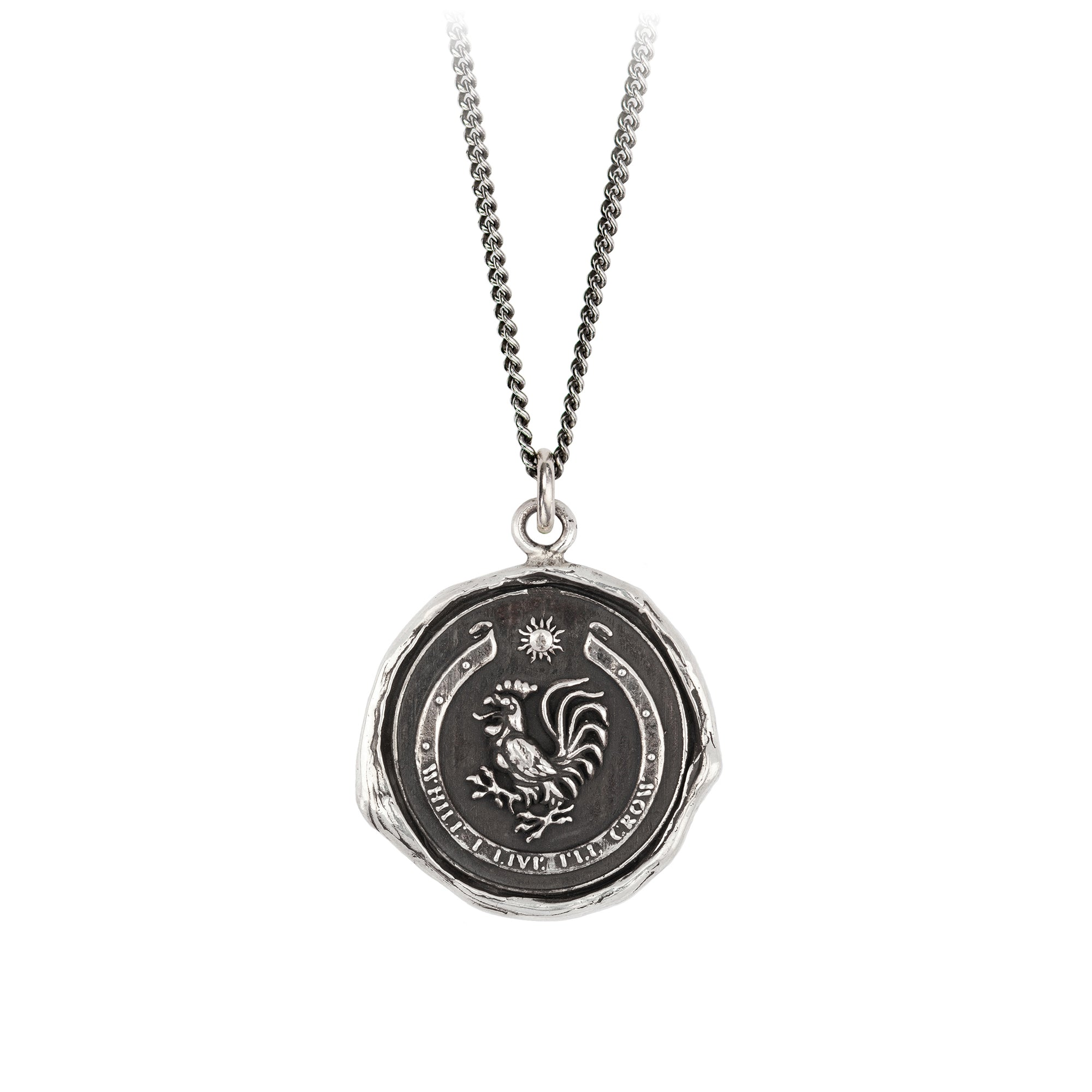 Pyrrha While I Live I'll Crow Talisman Necklace Fine Curb Chain Silver