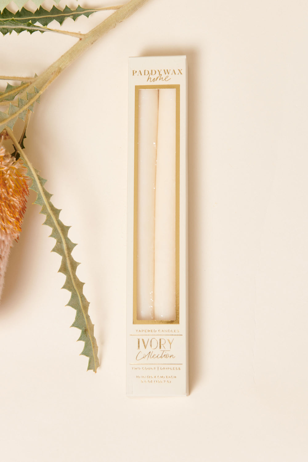 Paddywax Taper Candle Set in Ivory - Whimsy & Row