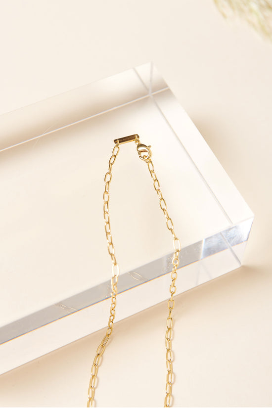 Machete Petite Oval Link Necklace in Gold - Whimsy & Row