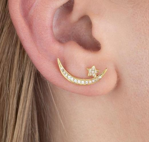 Crescent Moon Climber Earrings