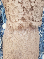Load image into Gallery viewer, Sakura Lace Dress in Blush