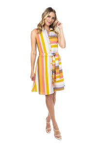 Barrett Dress in Bazooka Stripe