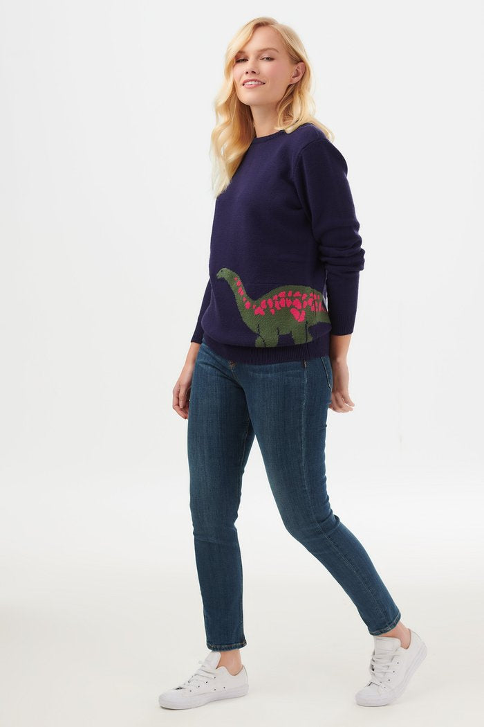 Stacey Dino Pop Sweater in Navy