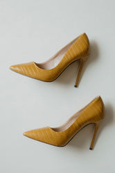 Kimye Pointed Pumps