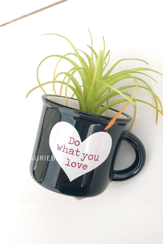 Mini Mug Succulents