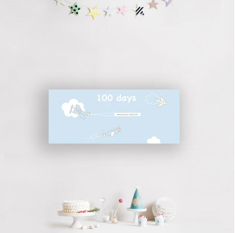 100 Days Airplane Banner